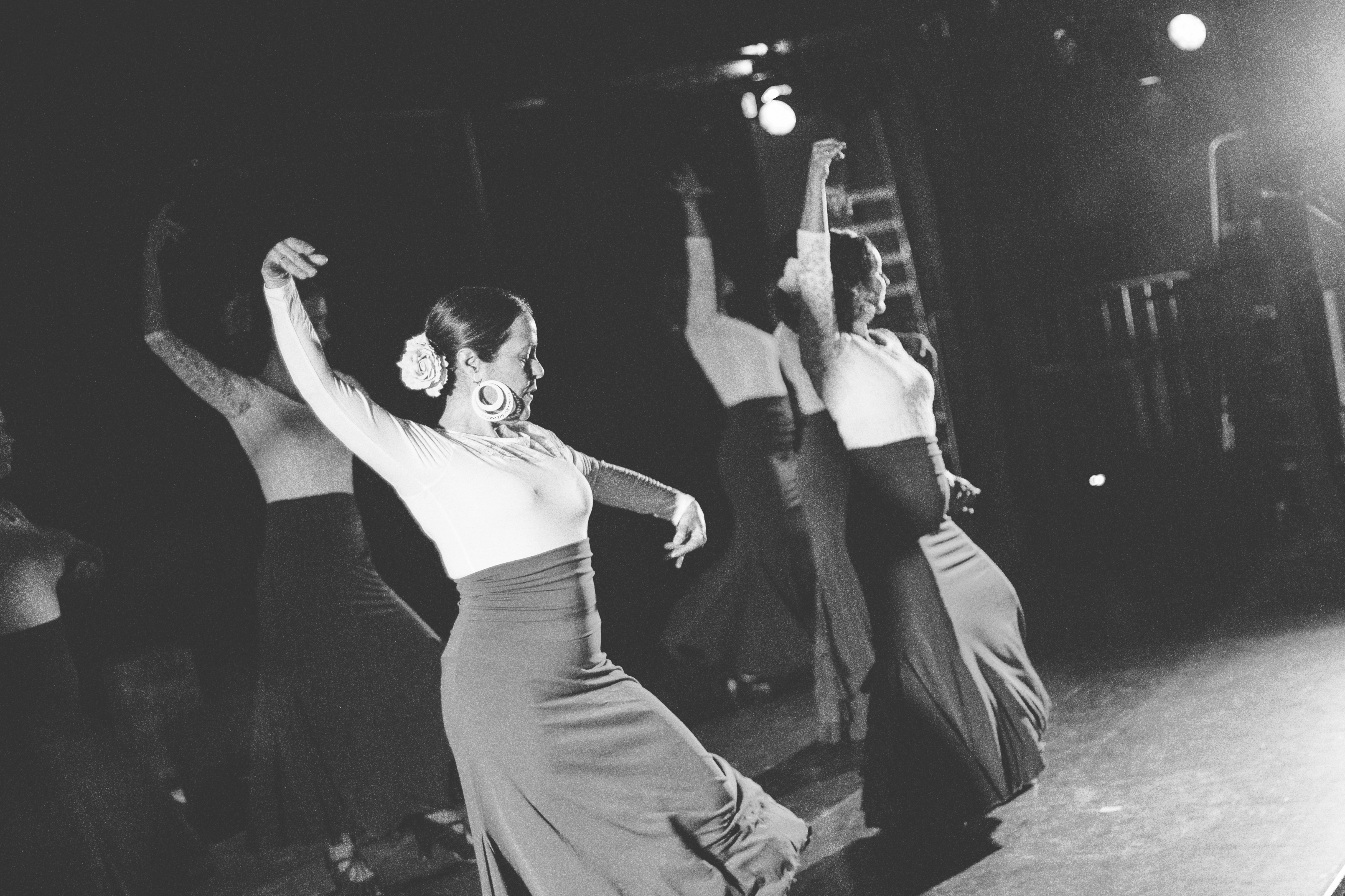 Flamenco__19