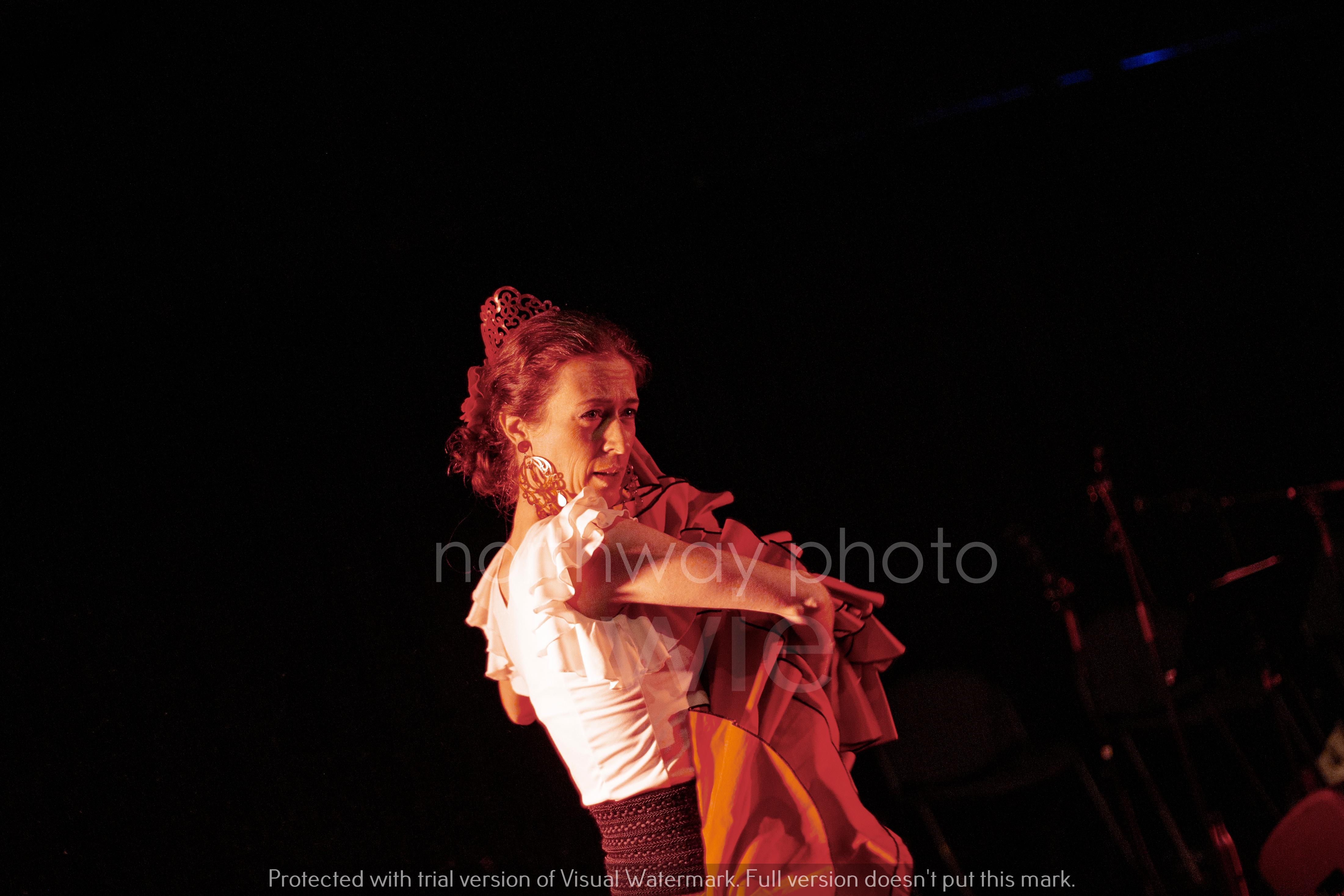 Flamenco__22