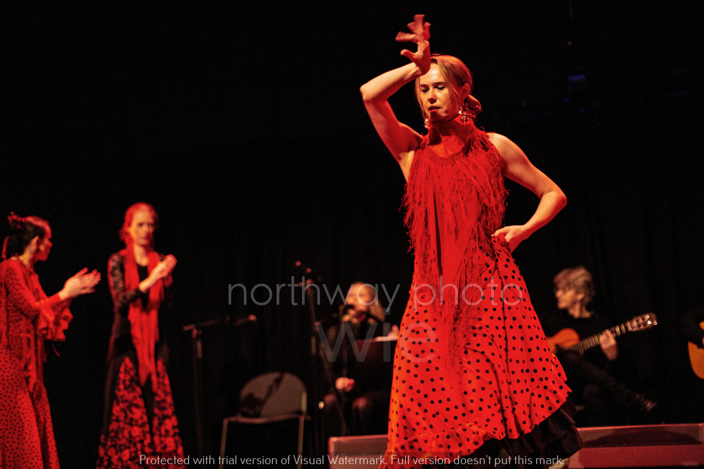 Flamenco__38