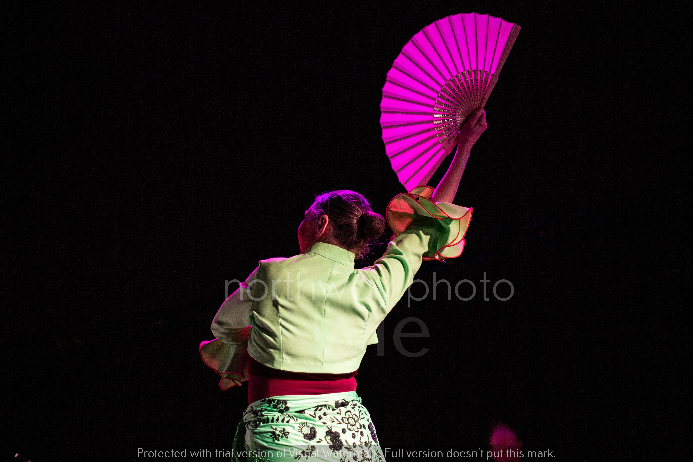 Flamenco__41