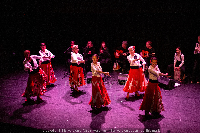 Flamenco__48