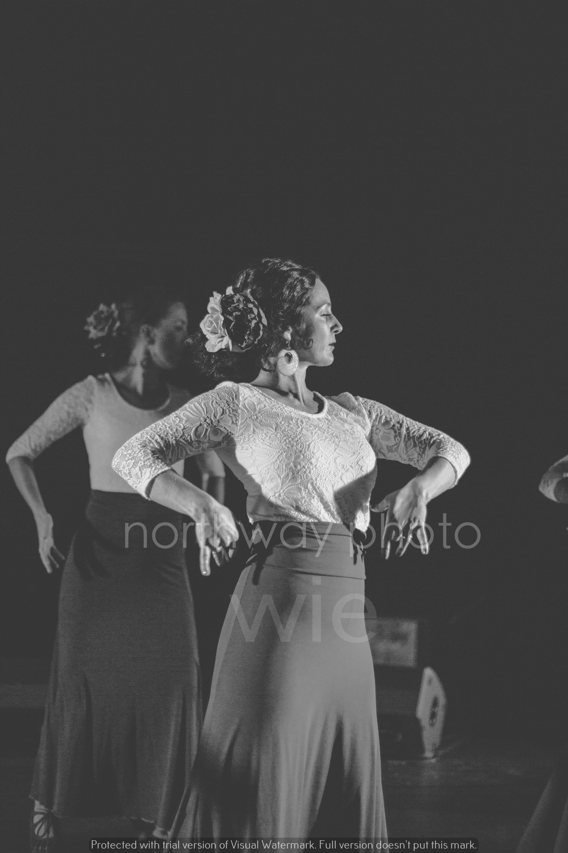 Flamenco__49
