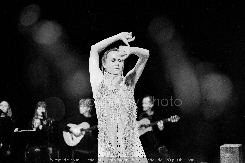 Flamenco__53
