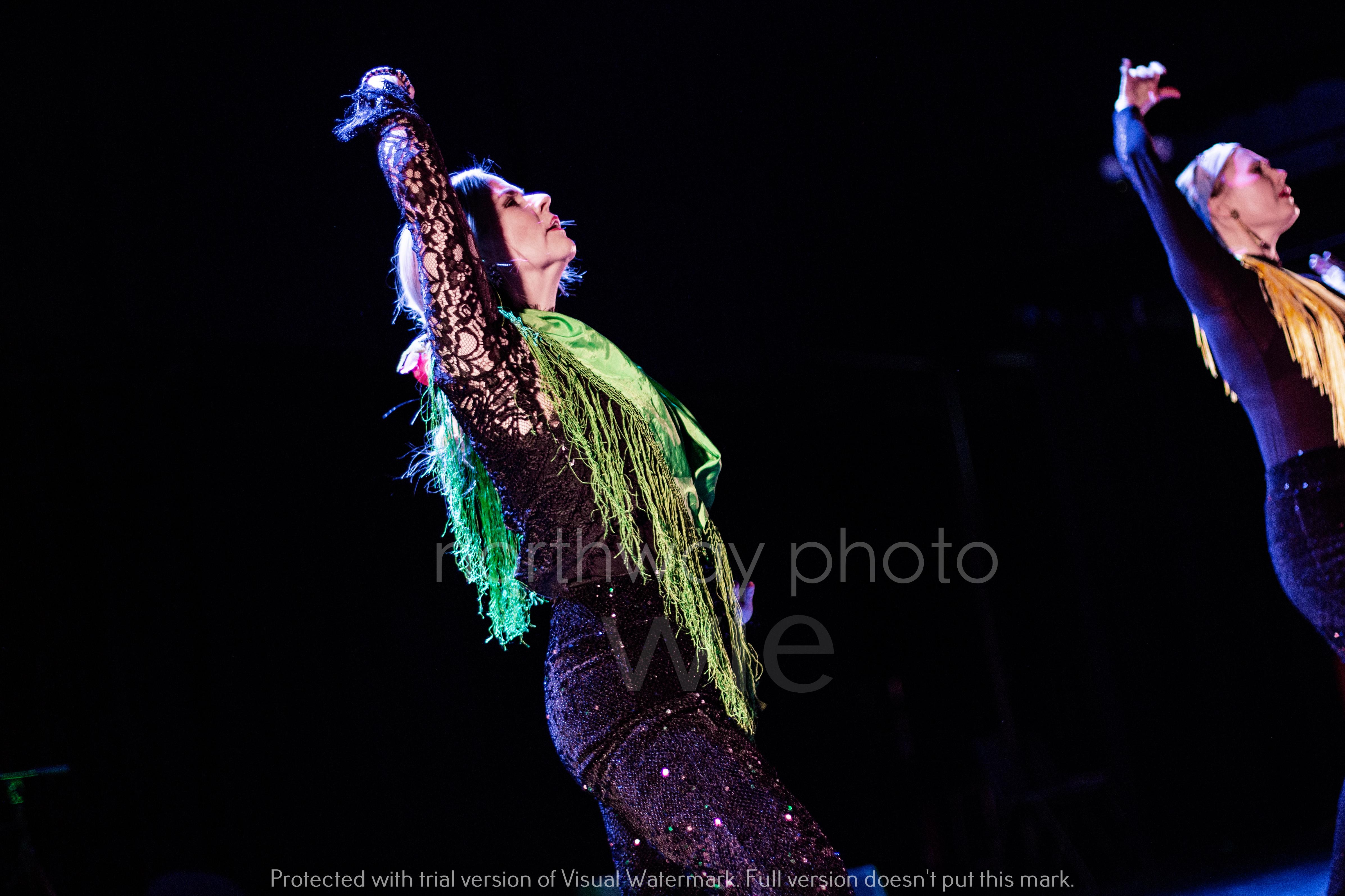 Flamenco__62