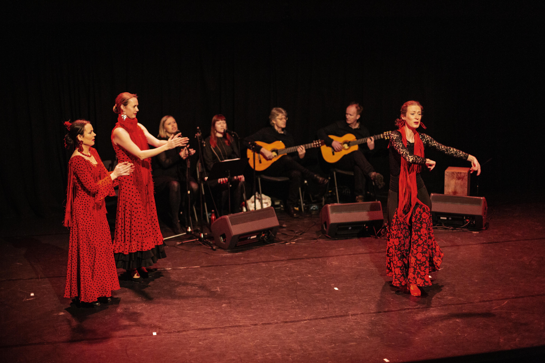 Flamenco__7