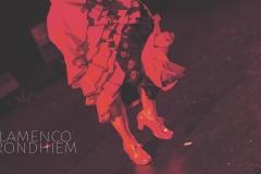 Flamenco__