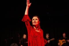 Flamenco__1