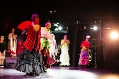 Flamenco__12