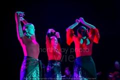 Flamenco__30