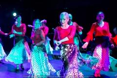 Flamenco__32