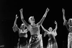 Flamenco__35