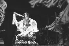 Flamenco__39