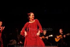 Flamenco__54