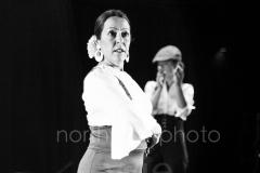 Flamenco__59