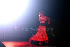 Flamenco__64
