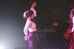 Flamenco__65